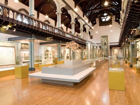 The hunterian on #Daysoutwithkids