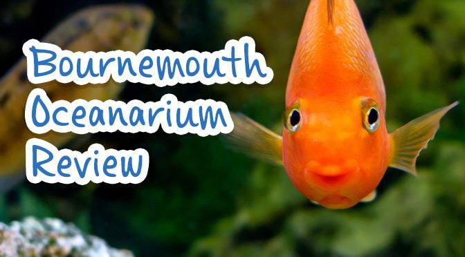 Bournemouth Oceanarium Review on #Daysoutwithkids