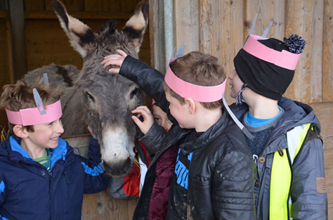 Donkey-Sanctuary on #Daysoutwithkids
