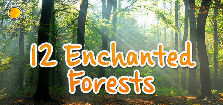 12 Enchanted Forests on #Daysoutwithkids