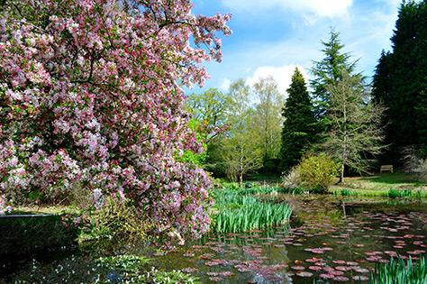 Furzey Gardens on #Daysoutwithkids