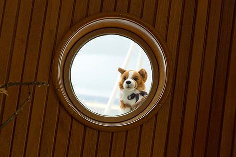 Royal Yacht Britannia on #Daysoutwithkids