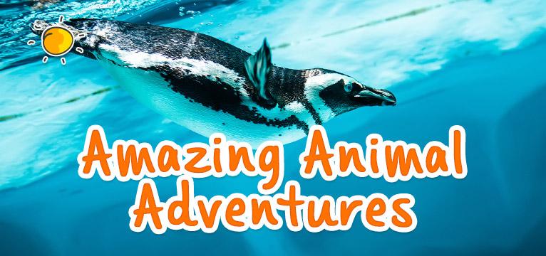 Amazing animal Adventures on #Daysoutwithkids
