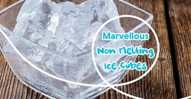 Non Melting Ice Cubes