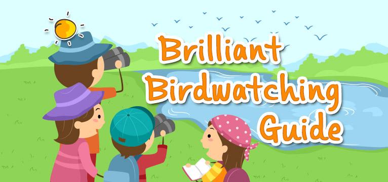 blogheader-brilliantbirdwatchingguide
