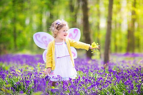 Farm-Fairy