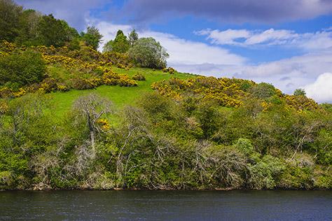Loch-Insh