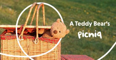 A teddy bear picniq