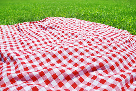 bigstock-Picnic-Cloth-on-Meadow-27364604 (1)