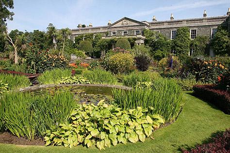 mout-stewart-house-garden