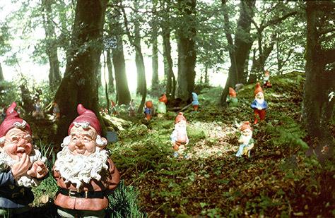 gnome-reserve