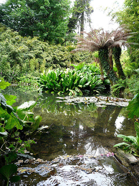 bigstock-tropical-gardens-at-heligan-5688617