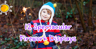 12-spectacular-firework-displays