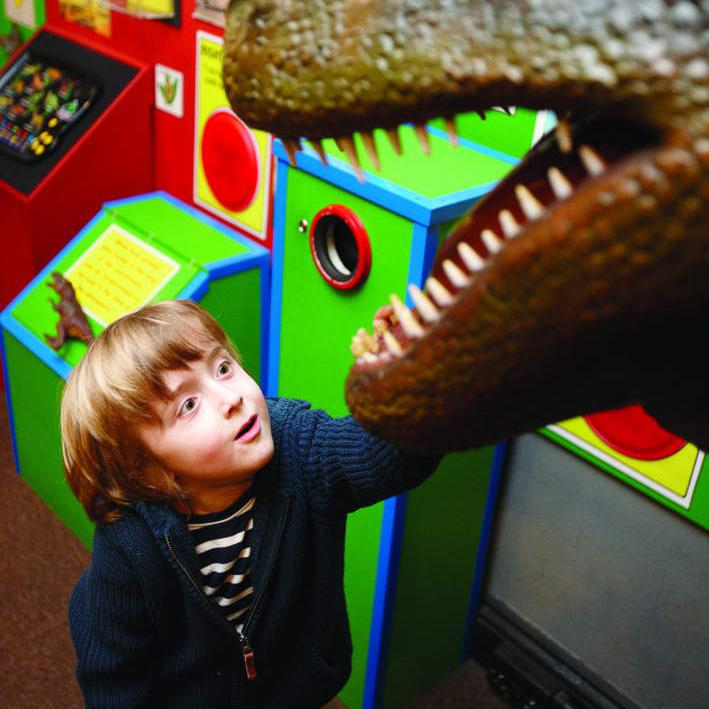 Credit: Dinosaur Museum