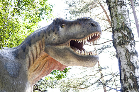 dinosaur bigstock