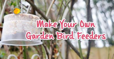 Make Your Own Garden Bird Feeders header