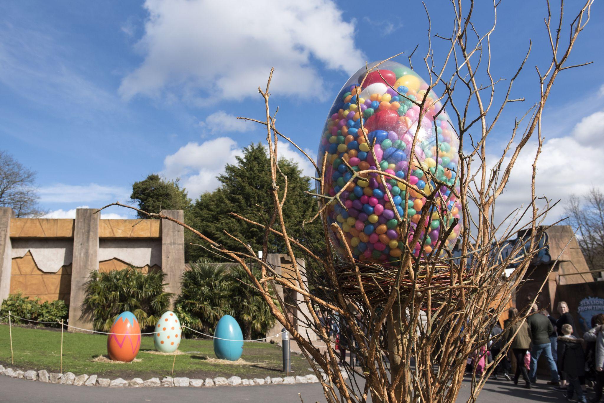 Egg 01