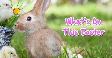 what's on this easter header