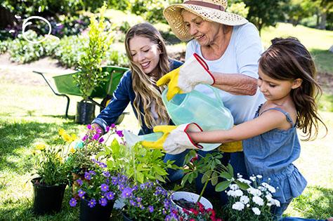 5 - gardening