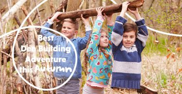 Best Den Building Adventures This Autumn