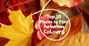 Top Places To Find Autumn Colours