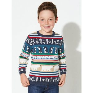 Boys Character Christmas Jumper