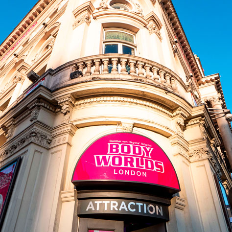 Body Worlds Entrance